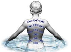features-biomagnetic-therapy[1]